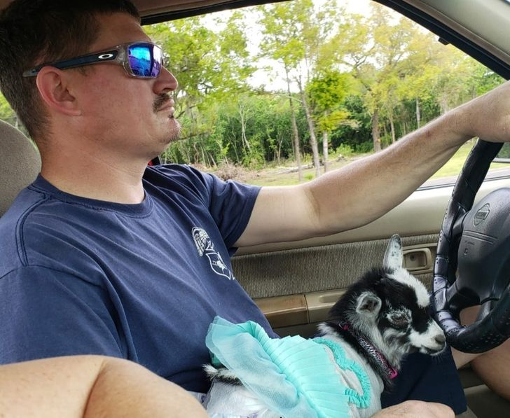 """Bright Siders Share 15+ Men Who Said """"No"""" to a Pet, but Then Changed Their Minds in a Heartbeat"""