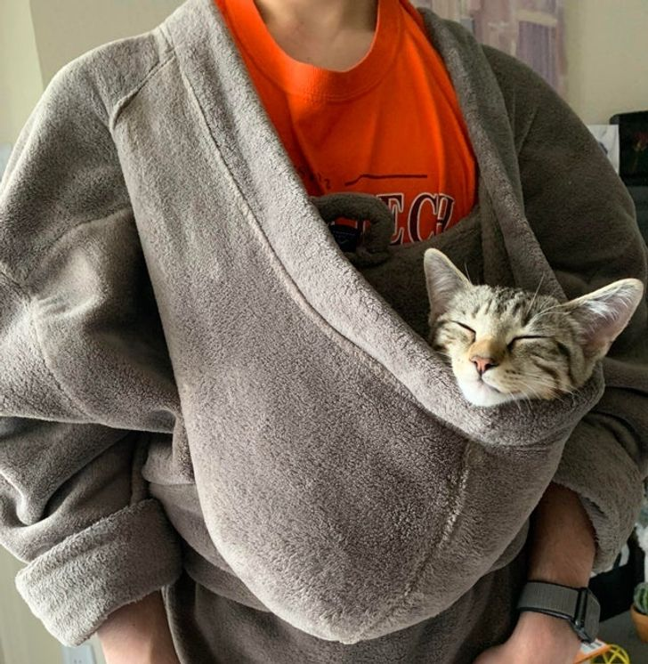 16 Reddit Users Who Always Have a Cool Pic to Post Thanks to Their Precious Pets