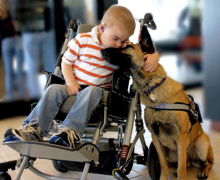 15 Pictures That Will Warm Your Heart