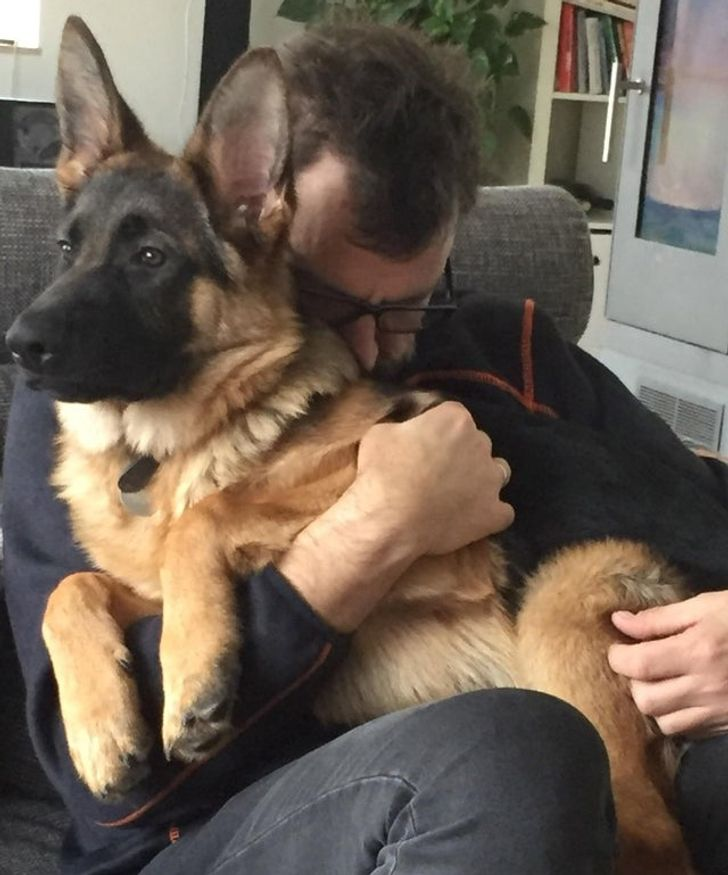 20+ Pets That Make Men's Hearts Melt Like Ice on a Hot Day
