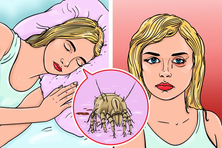 Why It's Bad to Make Your Bed Right After You Wake Up
