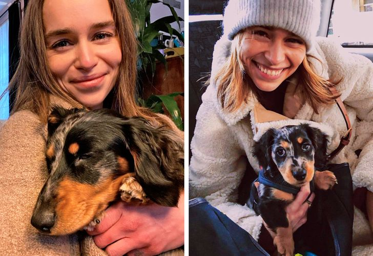 20 Lovely Pics of Celebrities and Their Pets That Can Disperse Any Gloomy Clouds