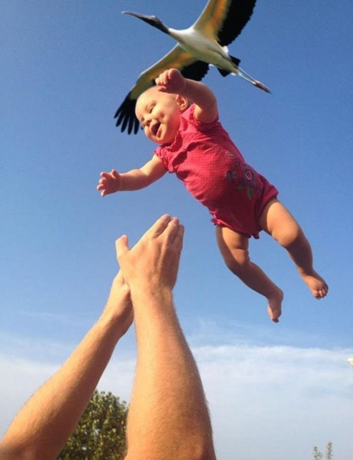 32Unique Photos That Required Perfect Timing