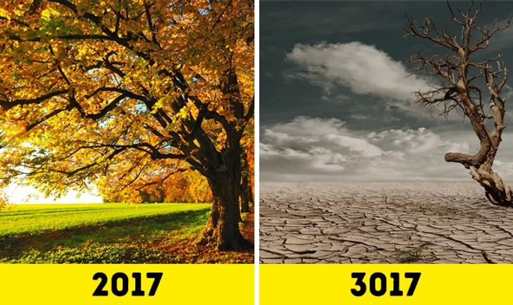 What Will Earth Look Like in1,000Years?