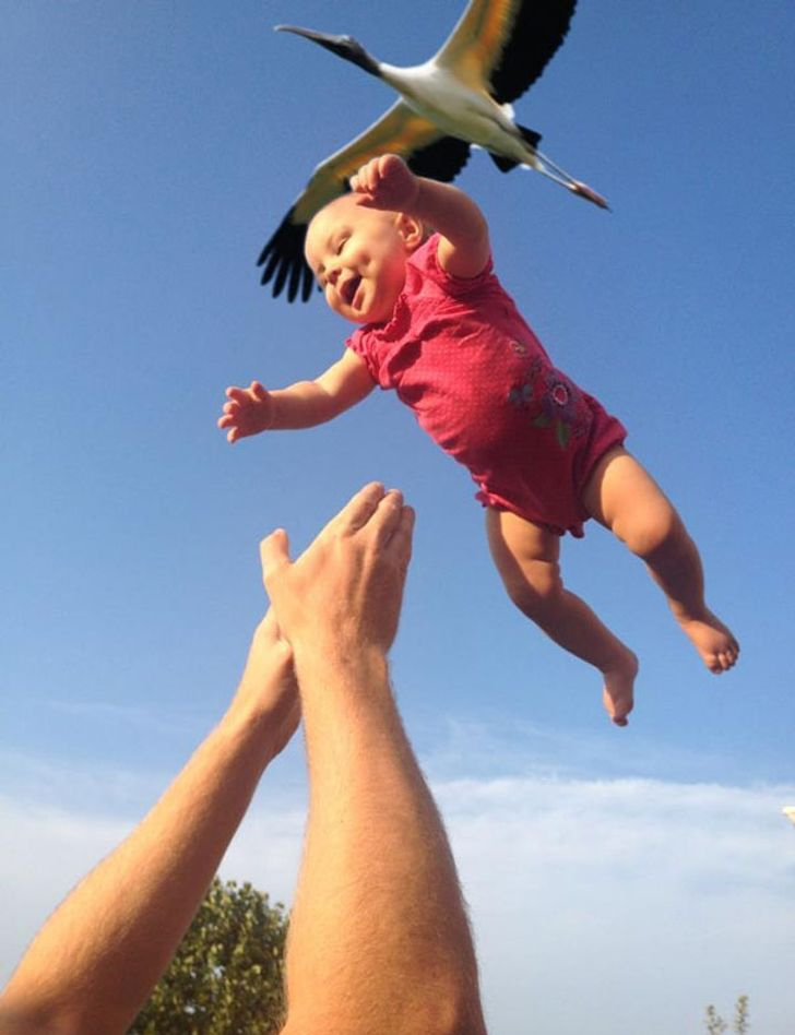 20+Photos Captured atthe Right Moment