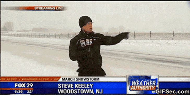20 Hilarious Fails on Live TV That Stole the Show