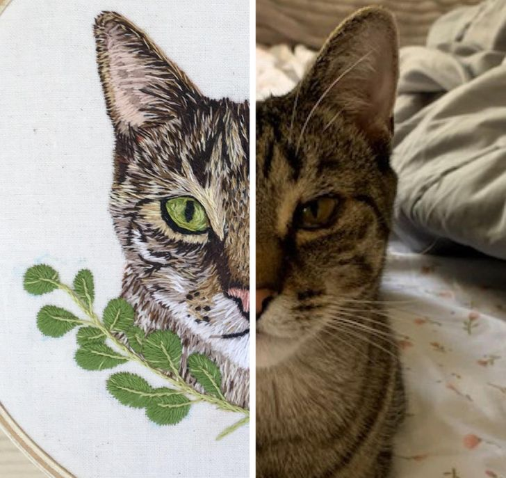 20 Photos That Prove a Little Bit of Patience Helps Create a Masterpiece
