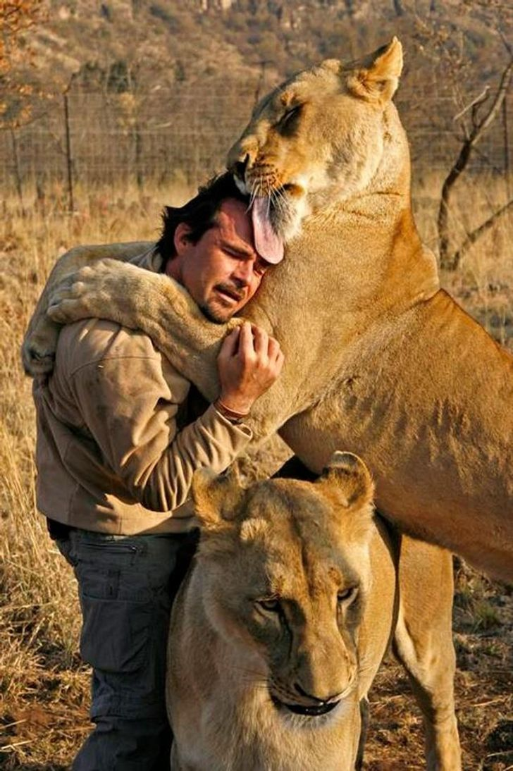 15Incredible Animals Whose Bravery Saved People's Lives