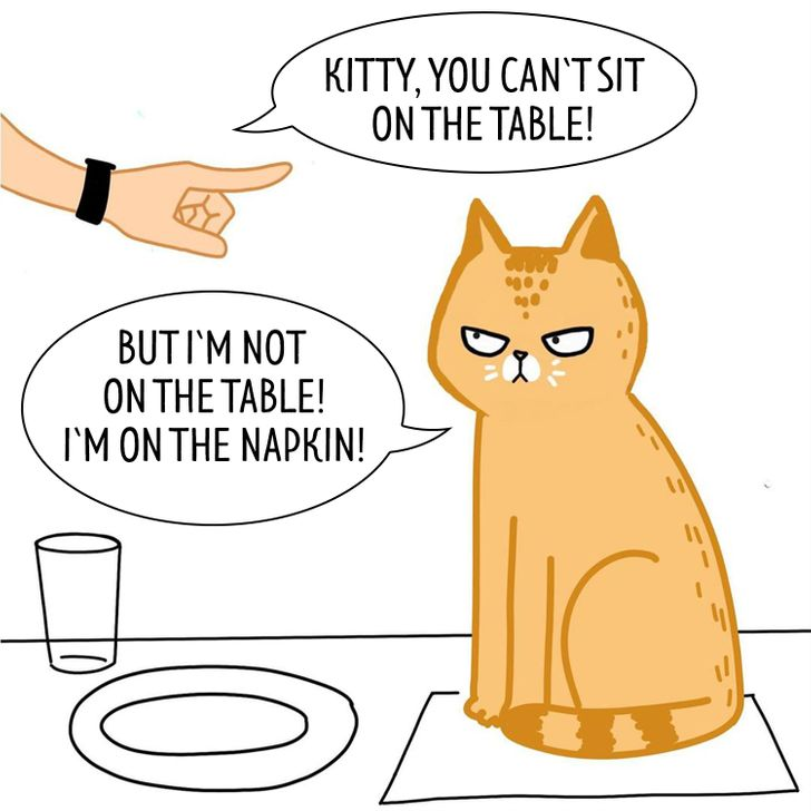 A Girl Draws Honest Comics About an Unpredictable Life With 4 Cats