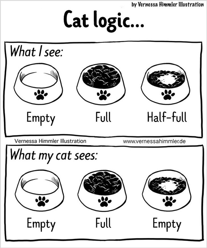 18Comics Showing What the Life ofaCat Owner IsLike
