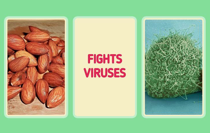 10 potravín, ktoré môžu prirodzene zvýšiť vašu imunitu