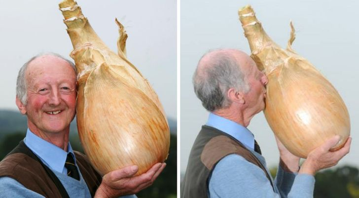 15 Gigantic Vegetables That It's Hard to Swallow Are Real