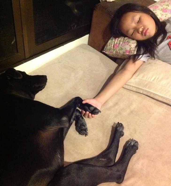 Bright Side Readers Share 21 Photos of Kids With Their Fluffy Besties That Show the True Meaning of Friendship