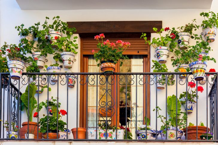19 Ways to Make a Garden in Your House