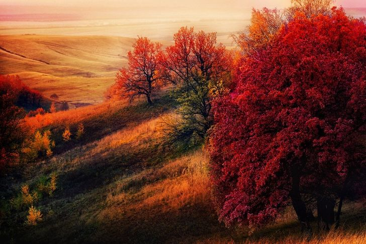 15spell-binding places where autumn looks truly magnificent