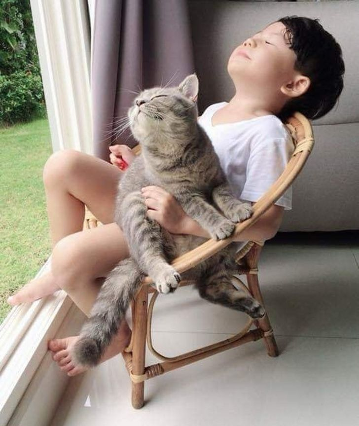 20 Animals Who Show Us What True Happiness Looks Like