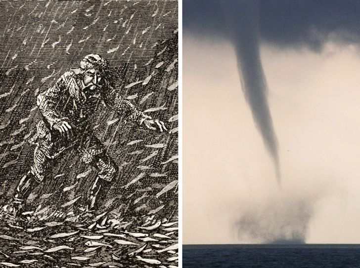 9Anomalies Proving That Nature Can Beat Anyone— Just Look atIts Power