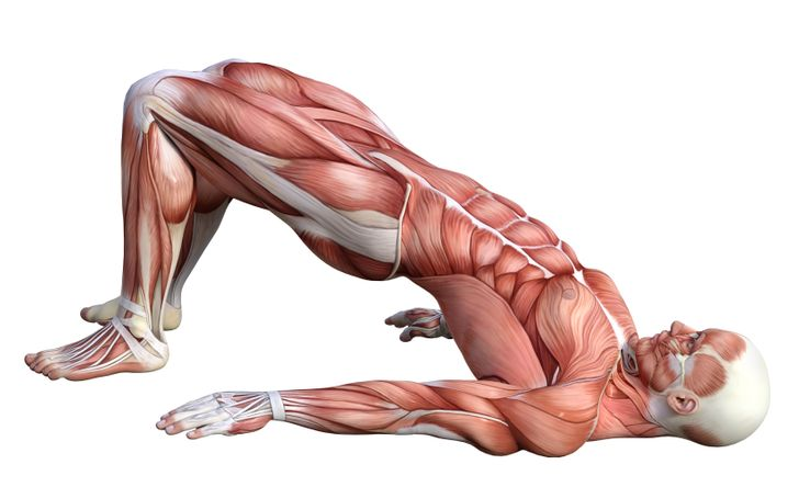 10 Easy Exercises to Kill Back Pain and Tone Your Abs at the Same Time
