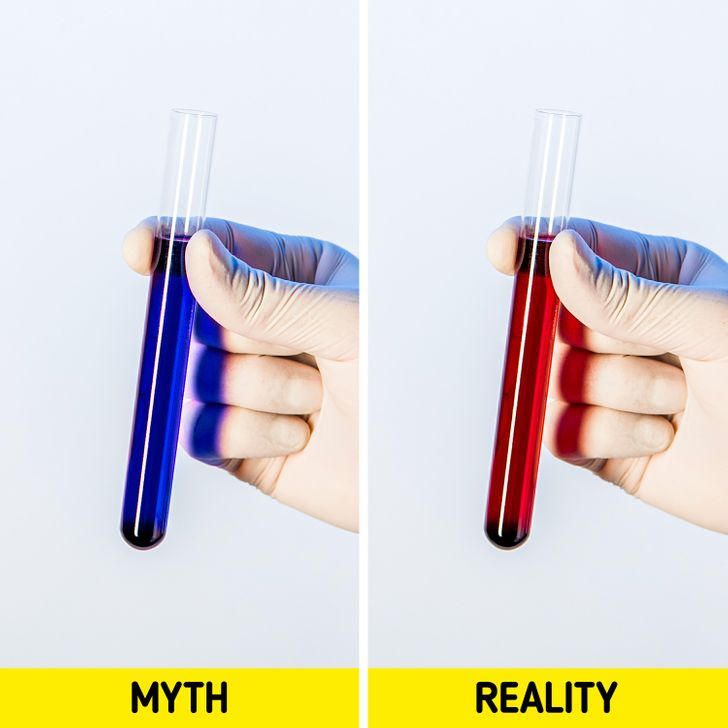 10 Myths About Our Bodies That Have Already Been Debunked