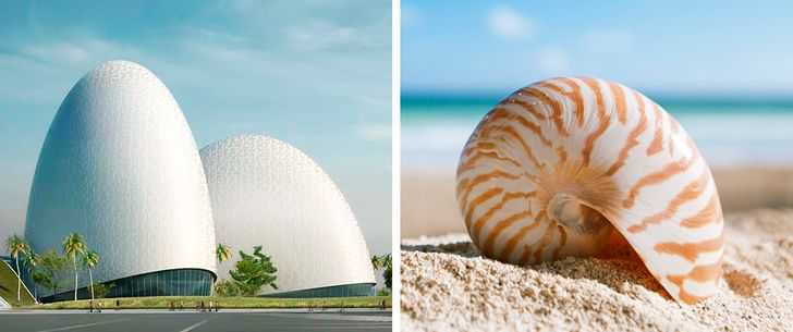 10incredible architectural masterpieces inspired bynature