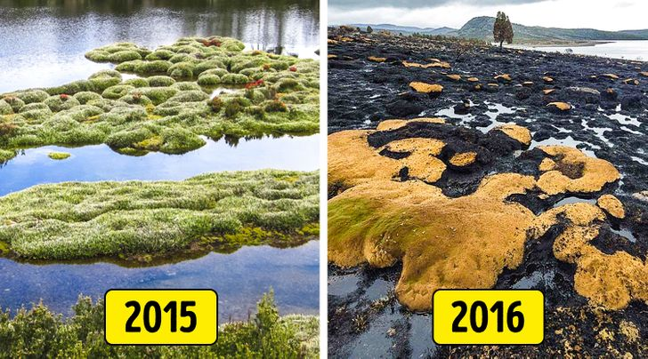 7 Popular Tourist Locations the World Has Lost Over the Last 5 Years