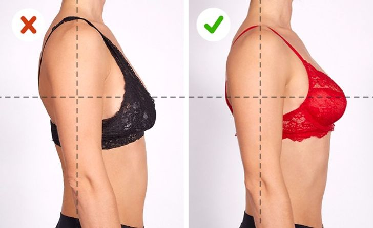 The Ultimate Guide toChoosing the Perfect Bra