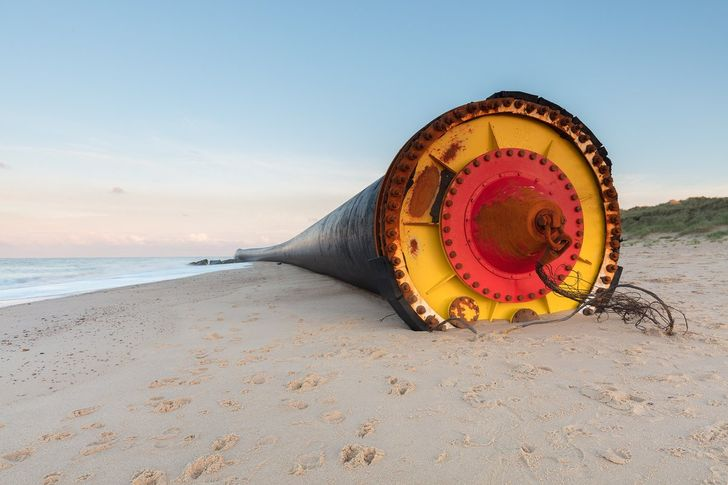 12 Most Amazing and Strangest Things Washed up on Beaches