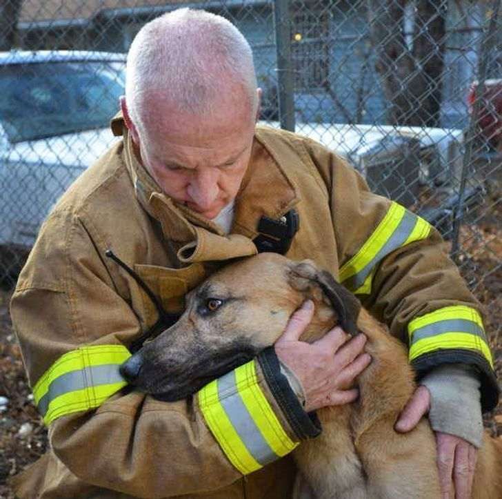 12 heart-warming photos that prove happy endings exist in real life
