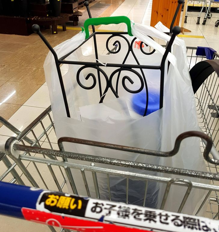 19 Things in Japan That Seem Either Wild or Genius but Definitely Not Boring