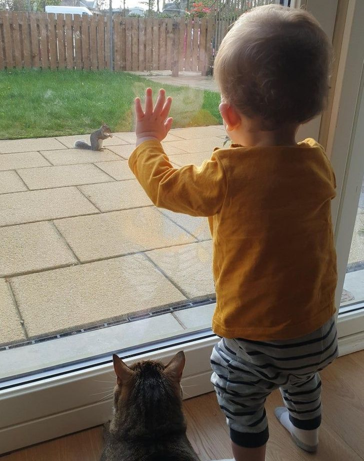 15 Photos That Prove Kids and Pets Are Pieces of the Same Puzzle