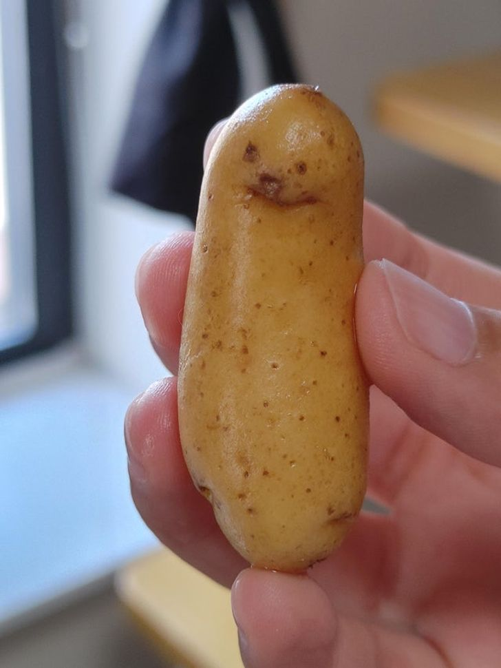 20 Times Fruits and Vegetables Revealed Their True Selves