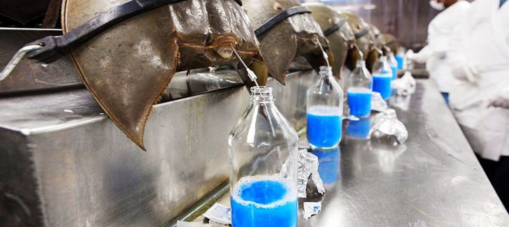 The15 Most Expensive Liquids onEarth, Some ofWhich WeEven Use