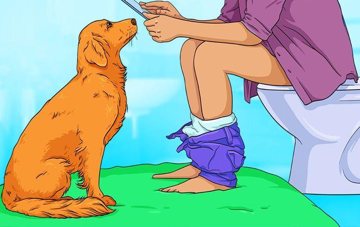 7 významov, ktoré sa môžu skrývať za čudným správaním vášho psa