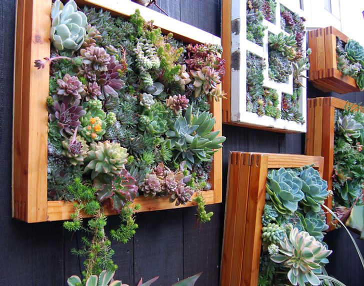 20unusual ways tomake your garden fence aseye-catching aspossible
