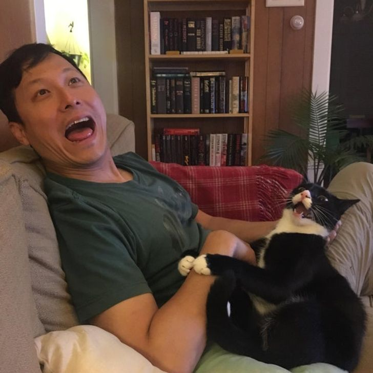 20+ Pets Whose Owners Will Do Anything for Them
