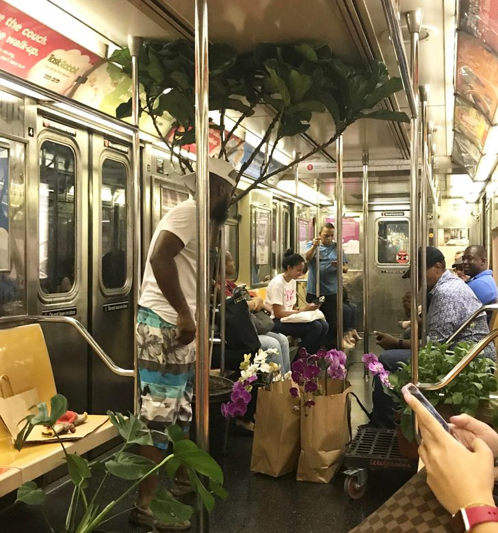 16 Photos That Prove the Subway Is a Portal to a Fantasy World