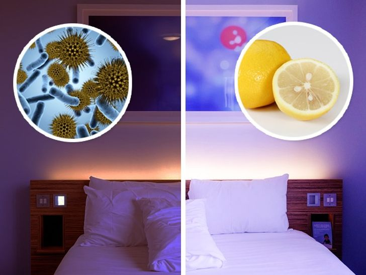 Here's What Will Happen if You Place a Piece of Lemon Next to Your Bed
