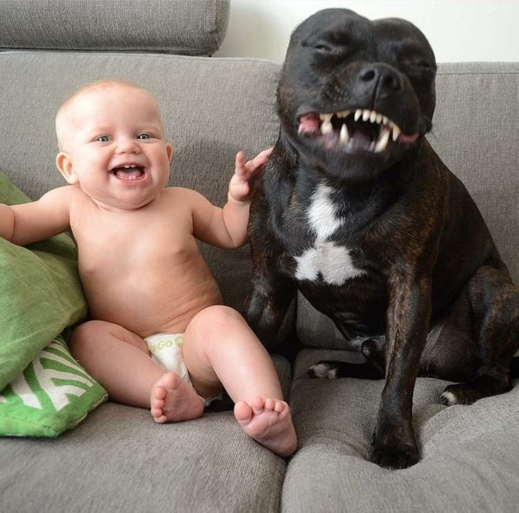 23Adorable Photos Proving That Children Can't Live Without Pets