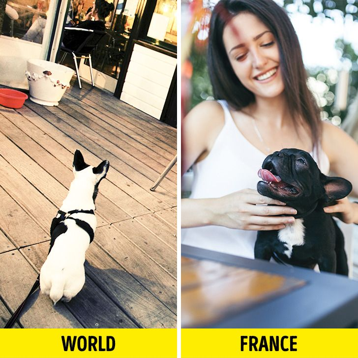 20 Facts About the French We Had to Double-Check to Believe