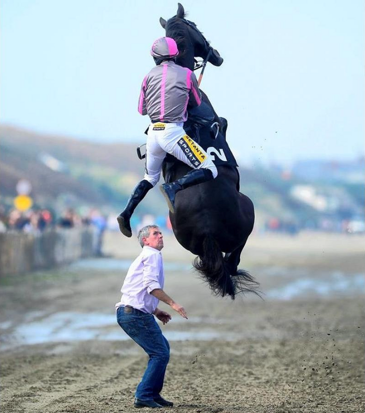 20Fantastic Photos Taken atJust the Right Moment