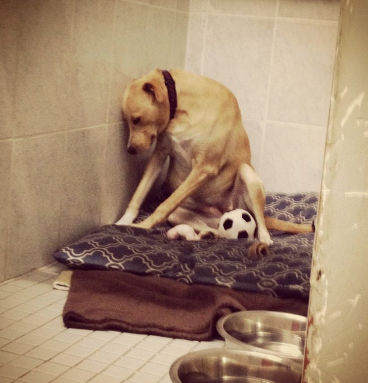 24Touching Photos That Are Full ofStrong Emotions