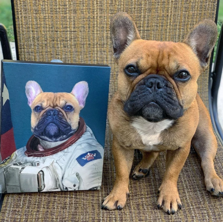 A Company Makes Cool Portraits of Your Pets That You Can Proudly Hang on Your Wall