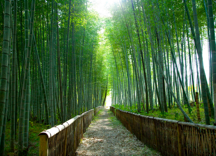 16Incredible Places Worth Visiting atLeast Once inYour Life