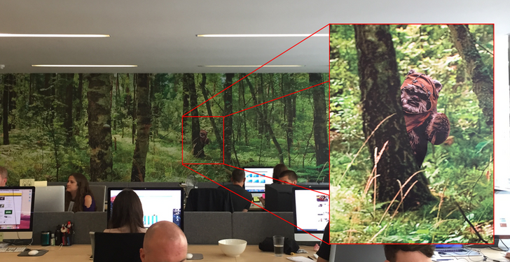 18 Photos Hiding Something Interesting (Hint: You Just Have to Look a Little Closer)